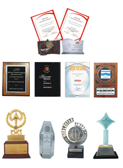 Prestigious Awards in the field of Printing